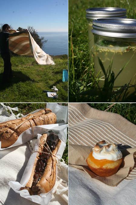 picnic site and spread